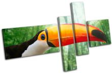 Toucan Bird Animals - 13-1828(00B)-MP13-LO